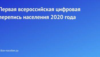 Первая всероссийская цифровая перепись населения 2020 года
